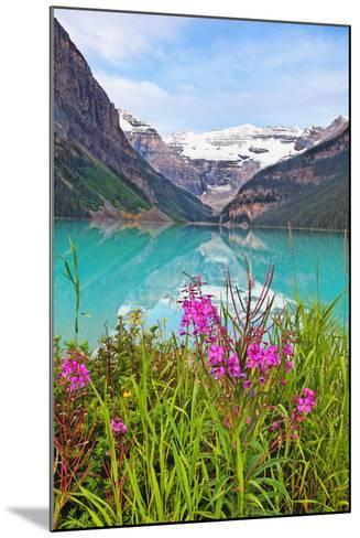 Fireweed at Lakeside, Lake Louise, Canada-George Oze-Mounted Photographic Print