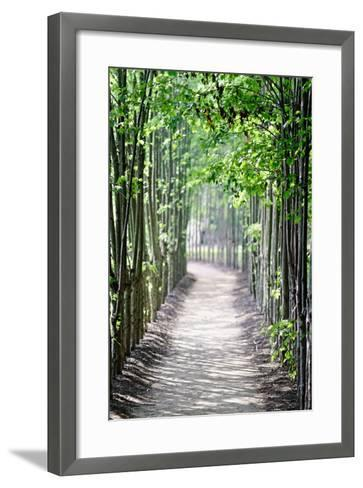 Path in the Woods-George Oze-Framed Art Print