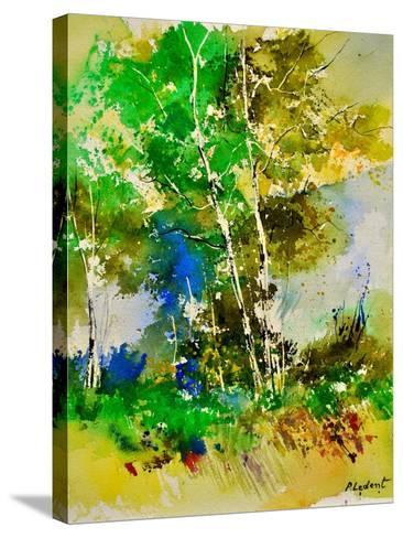 Watercolor 111061-Pol Ledent-Stretched Canvas Print