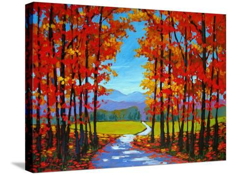Autumn Path III-Patty Baker-Stretched Canvas Print