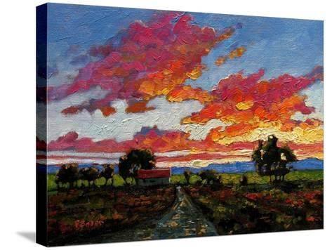 Sunset on the Plains-Patty Baker-Stretched Canvas Print