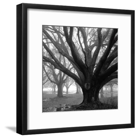 Oak Grove, Winter-William Guion-Framed Art Print