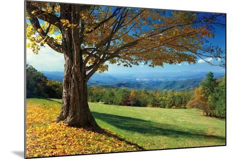 Blue Ridge Beauty-Mike Jones-Mounted Photographic Print