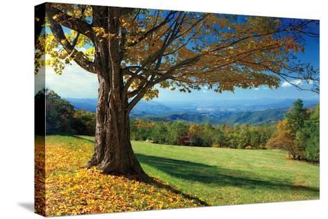 Blue Ridge Beauty-Mike Jones-Stretched Canvas Print