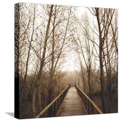 Right Here-Jorge Llovet-Stretched Canvas Print