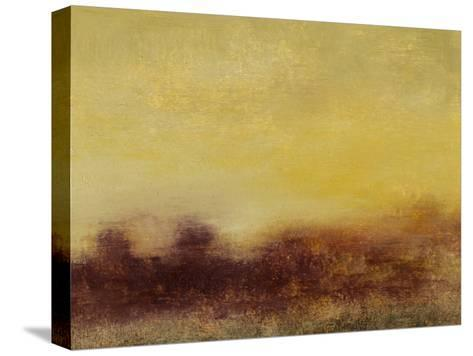 Sunlight II-Sharon Gordon-Stretched Canvas Print