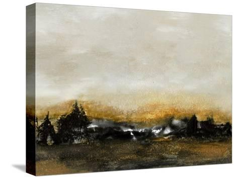 Land VI-Sharon Gordon-Stretched Canvas Print