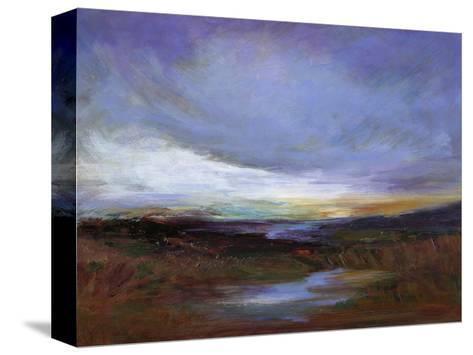 Coastal Wetlands-Sheila Finch-Stretched Canvas Print
