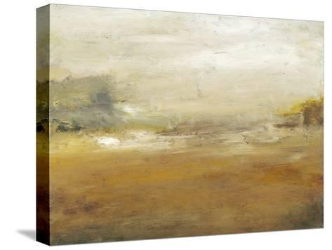 Along the Island II-Sharon Gordon-Stretched Canvas Print