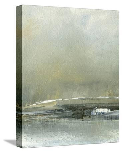 Wander III-Sharon Gordon-Stretched Canvas Print