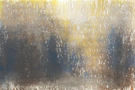 Woods Edge II-Jason Johnson-Stretched Canvas Print