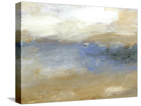 Tidal Pool I-Sharon Gordon-Stretched Canvas Print