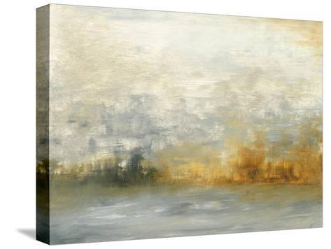 Low Country IV-Sharon Gordon-Stretched Canvas Print