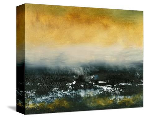 Falls I-Sharon Gordon-Stretched Canvas Print