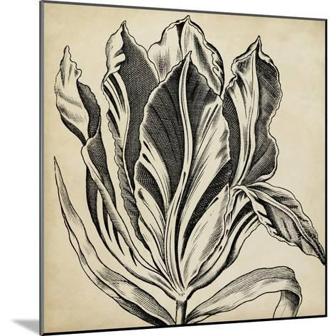 Graphic Floral I-Vision Studio-Mounted Art Print