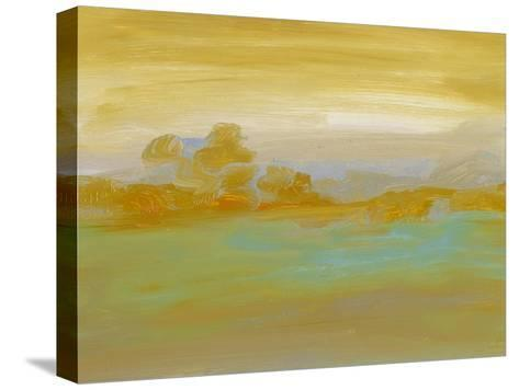 Ambient II-Sharon Gordon-Stretched Canvas Print