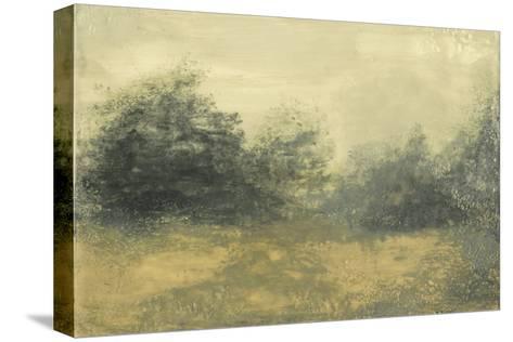 Summer View I-Sharon Gordon-Stretched Canvas Print