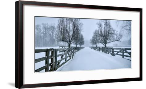Snowy Road II-James McLoughlin-Framed Art Print
