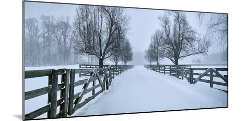 Snowy Road II-James McLoughlin-Mounted Photographic Print