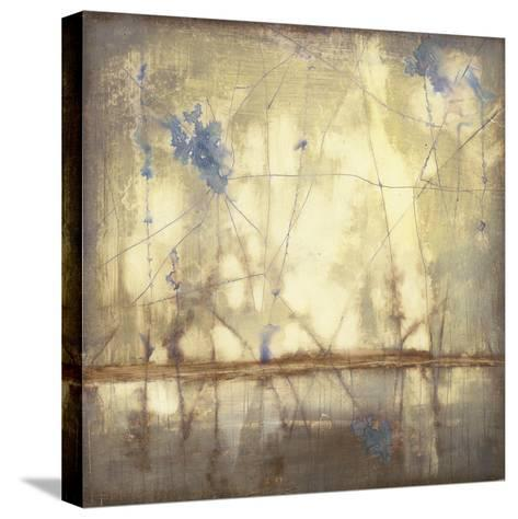 Topography I-Jennifer Goldberger-Stretched Canvas Print