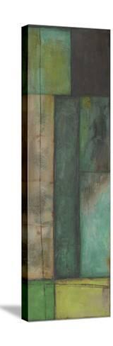Sea Change III-Jennifer Goldberger-Stretched Canvas Print