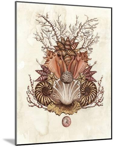 Baroque Nautilus II-Naomi McCavitt-Mounted Art Print