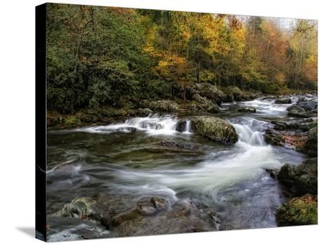 Autumn Dream-Danny Head-Stretched Canvas Print