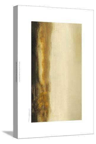 Canyon I-Sharon Gordon-Stretched Canvas Print