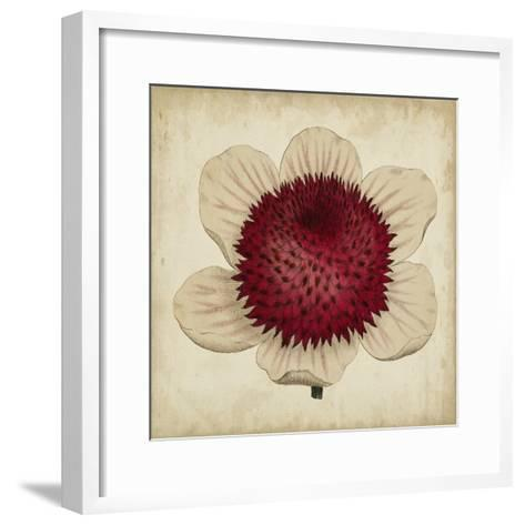 Pop Floral IV-Vision Studio-Framed Art Print