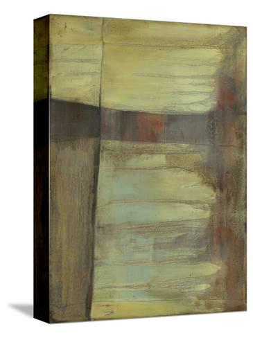 Excavate II-Jennifer Goldberger-Stretched Canvas Print