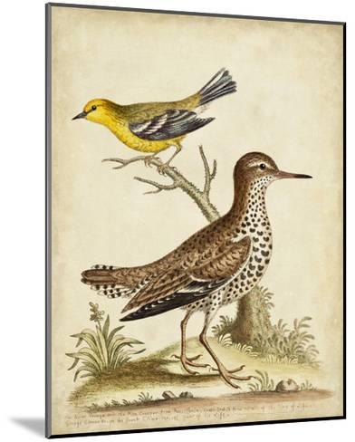 Antique Bird Menagerie I-George Edwards-Mounted Art Print