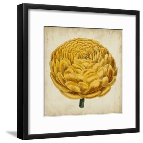 Pop Floral VIII-Vision Studio-Framed Art Print