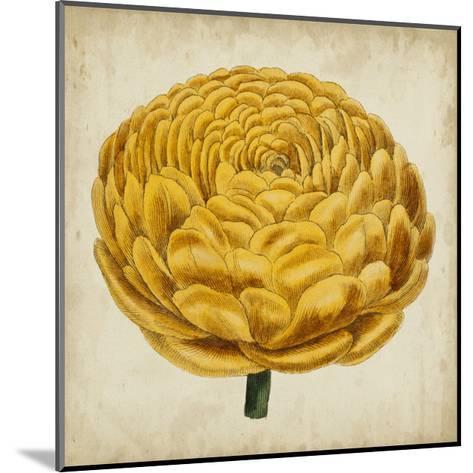 Pop Floral VIII-Vision Studio-Mounted Art Print