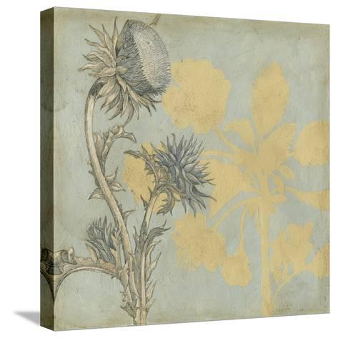 Shadow Floral I-Megan Meagher-Stretched Canvas Print