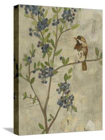 Joyful Garden II-Chariklia Zarris-Stretched Canvas Print
