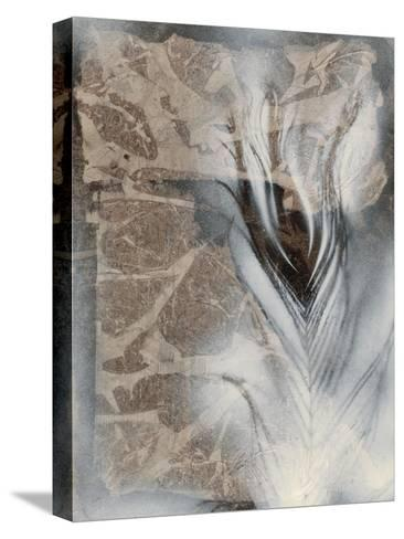 Feather & Stone I-Renee W^ Stramel-Stretched Canvas Print