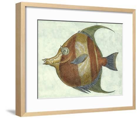 Small Angel Fish II-Jennifer Goldberger-Framed Art Print