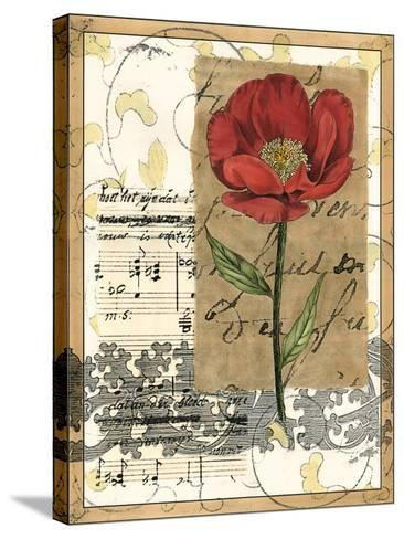 Small Poppy Melody I-Vision Studio-Stretched Canvas Print
