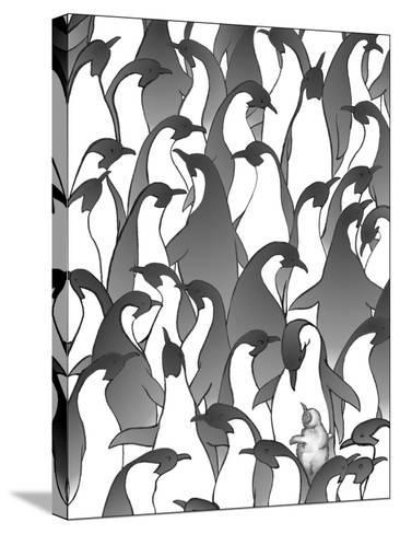 Penguin Family I-Charles Swinford-Stretched Canvas Print