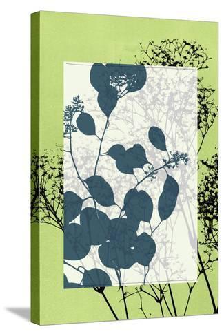 Small Translucent Wildflowers VII-Jennifer Goldberger-Stretched Canvas Print