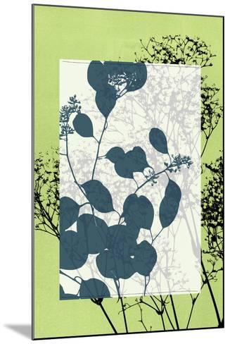 Small Translucent Wildflowers VII-Jennifer Goldberger-Mounted Art Print