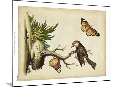 Companions in Nature II-George Edwards-Mounted Art Print