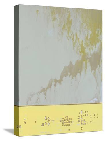 Sentry II-Dlynn Roll-Stretched Canvas Print