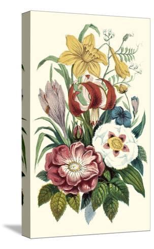 Garden Gathering VII--Stretched Canvas Print