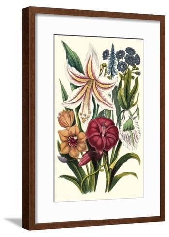 Garden Gathering V--Framed Art Print