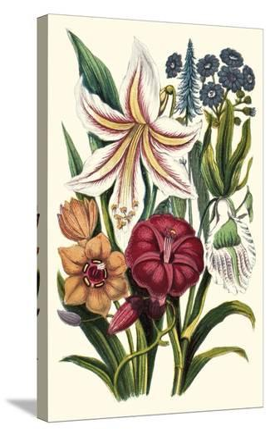 Garden Gathering V--Stretched Canvas Print