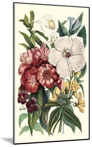 Garden Gathering IV--Mounted Art Print
