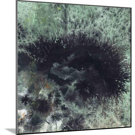 Coral & Jelly Fish I-Dlynn Roll-Mounted Art Print