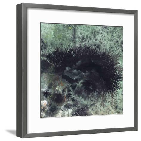 Coral & Jelly Fish I-Dlynn Roll-Framed Art Print