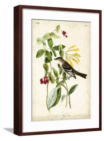 Audubon Bird & Botanical II-John James Audubon-Framed Art Print